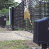 Dual Leaf Swing Gates